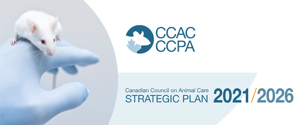 Cover of the CCAC Strategic Plan 2021-2026
