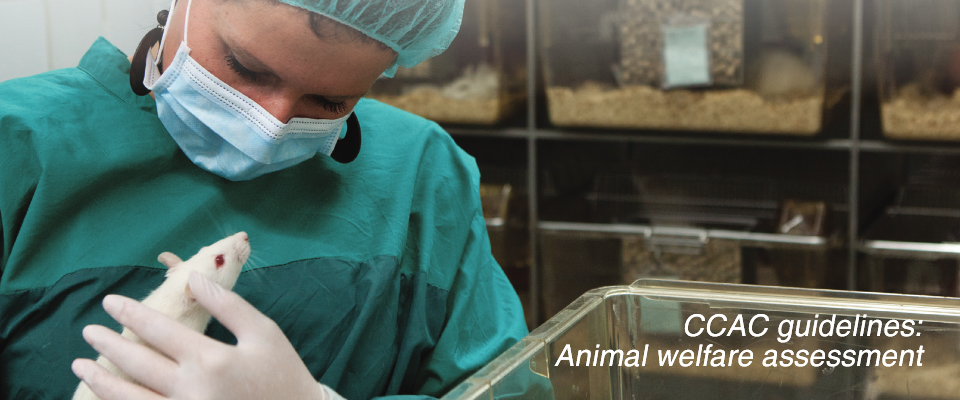 Cover of the CCAC Guidelines on Animal Welfare Assessement